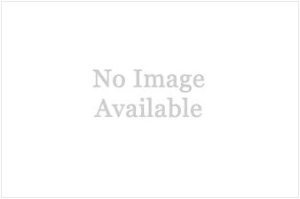 2520)Рукоход «Параллель У»