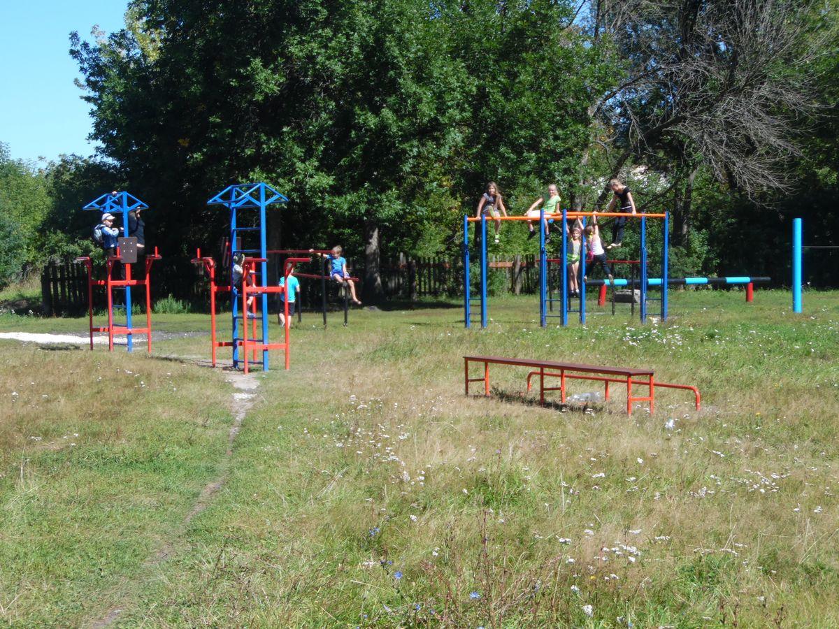 Спортивная площадка в Новлянской школе Селивановского района