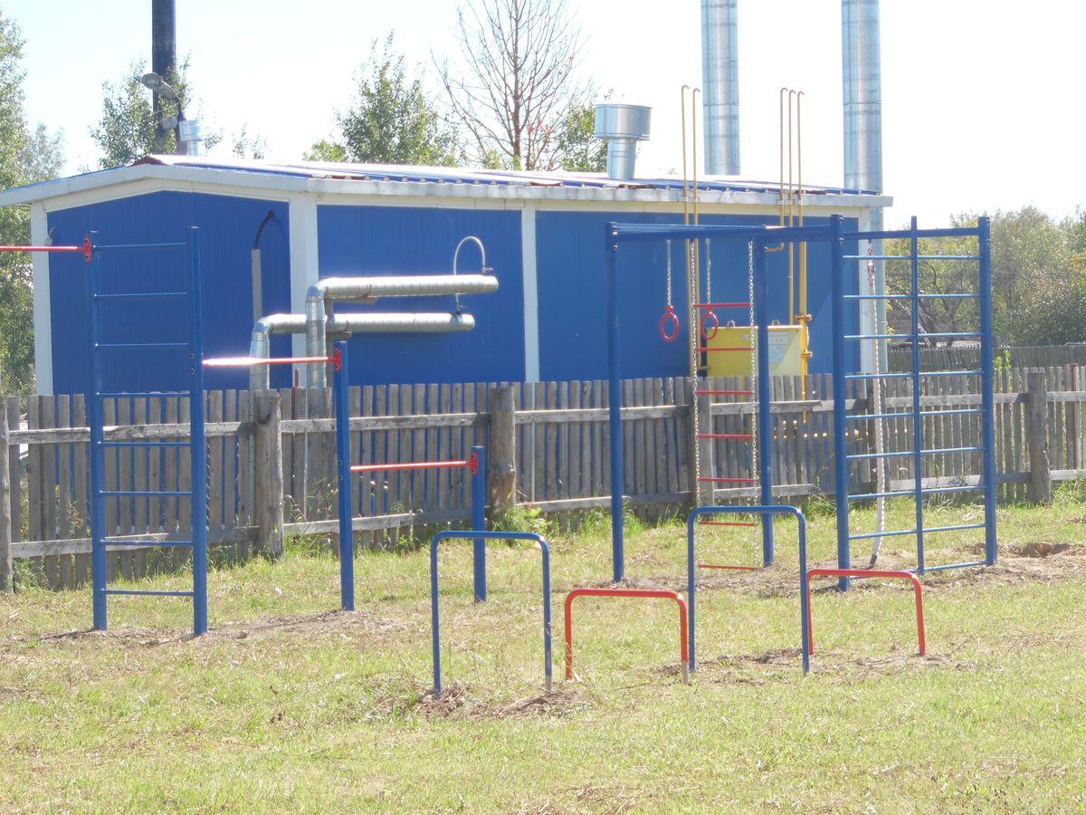 Фрагмент спортивной площадки в Волосатовской средней школе